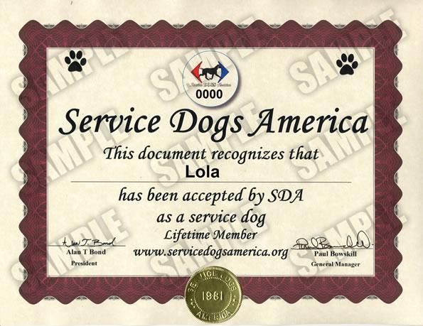 service dog certificate - service dogs america